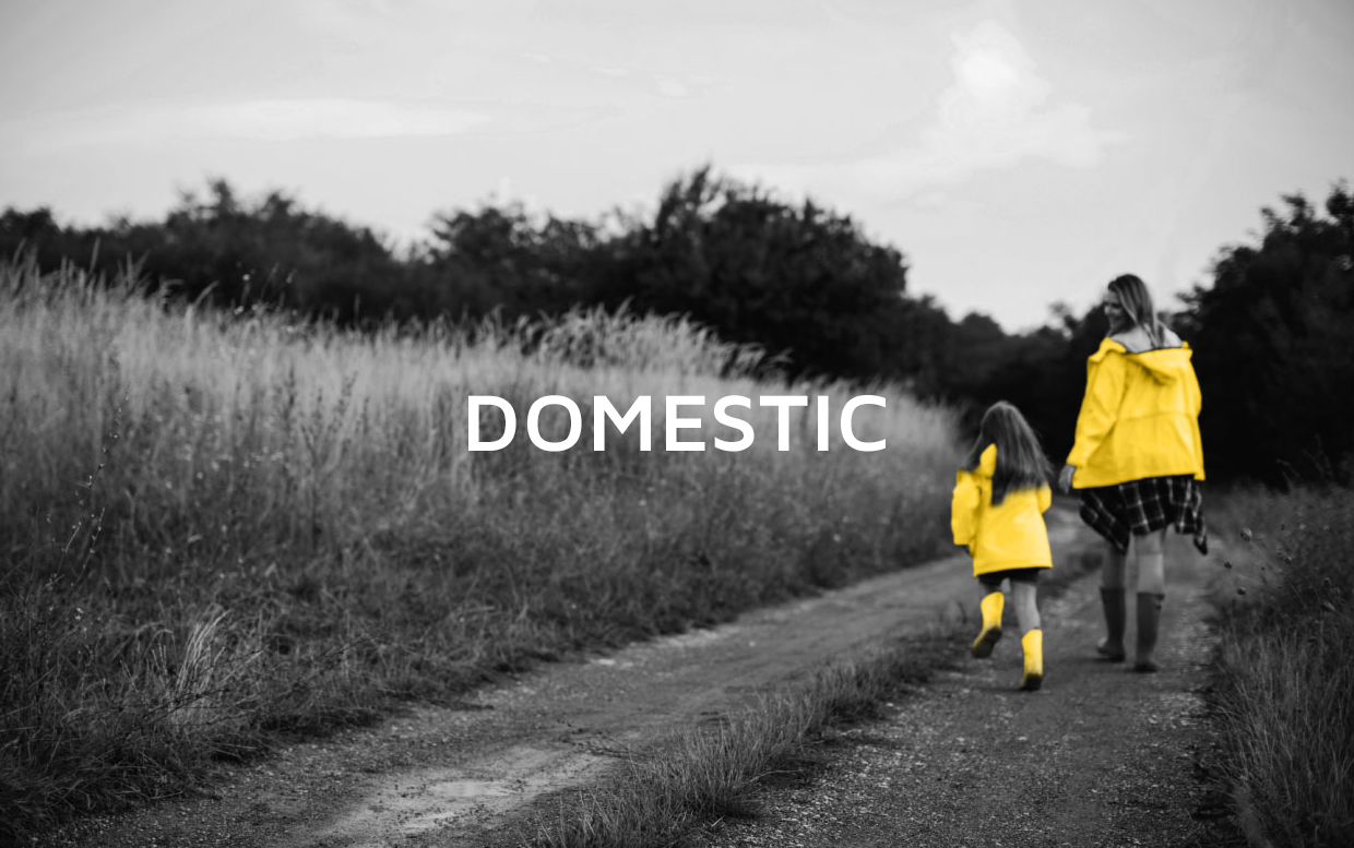 domestic-home-banner